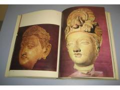DREVNE KULTURE INDIJA , Maurizio Taddei