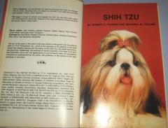 SHIN TZU
