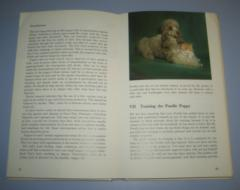 POODLE GUIDE pet library `s
