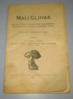 MALI GLJIVAR , Dr Vale Vouk