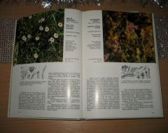BILJKE JUGOSLAVIJE komplet 5 knjiga