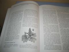 ZELENA APOTEKA lečenje lekovitim biljem