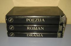 Rađanje moderne književnosti poezija drama roman