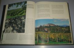 TERAN vinska posebnost krasa , Friderik Vodopivec