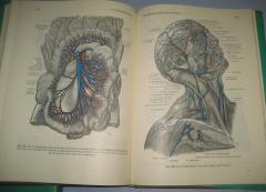 Anatomski atlas nemački jezik